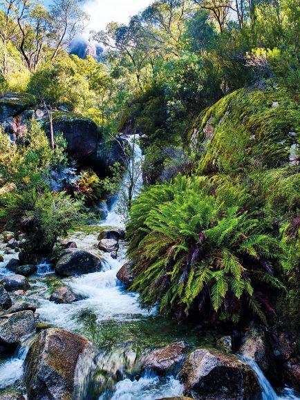 Lady Bath Falls and Eurobin Creek